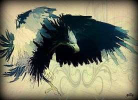 Eagle by gilly15