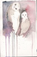 creepy owls by lexess
