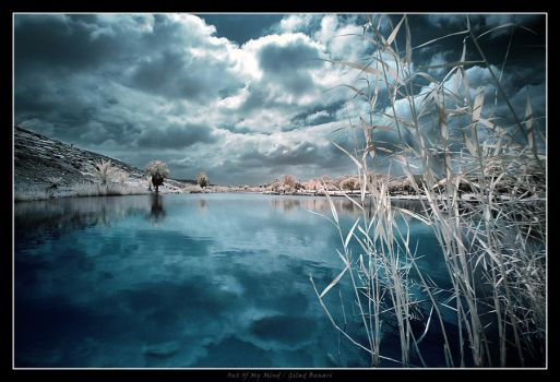 Out Of My Mind by gilad