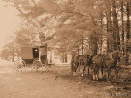 Amish Carriage by Anachronist84