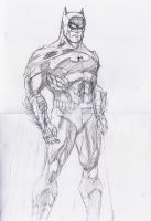 Batman DC new 52 jim lee 1 by dushans