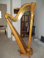 My Harp Gilligan Again by OwossoHarpist