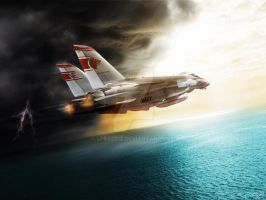 F-14 Wolfpack by LPBS2012