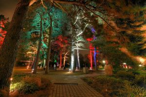 Westfalenpark at night by HaraldW