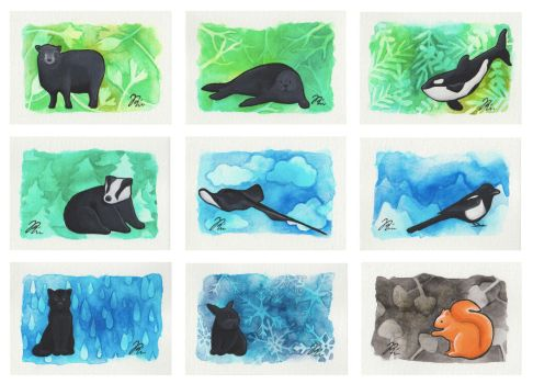 Artist Trading Cards by sofierimmer
