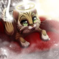 Heaven Kitty by DJ88