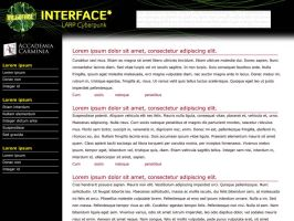 Interface LARP by Meow-chi