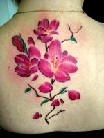 cherry blossoms freehand by nirpa