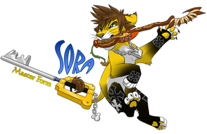 Sora Master Form by Nightrizer