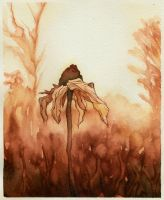 October Flower by CuriousCanvas