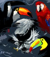 Tropical Birds by TheRisingSoul