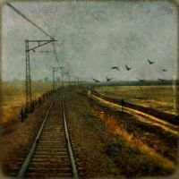 Railroad to Nowhere by IMAGENES-IMPERFECTAS