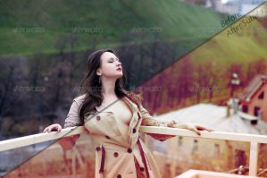 8 Professional Photoshop Actions  - Subela by mudgalbharat