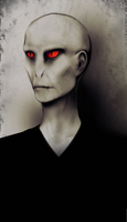 Lord Voldemort by possim