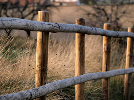 Fencing Nature by Netphilos