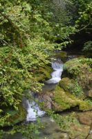 Brook in Massif Of Vercors by A1Z2E3R