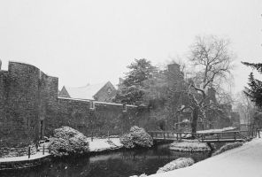 Palace Moat in Winter by EarthHart