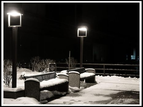 Waiting in the Cold by akshayp