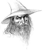 Gandalf Sketch by Buchemi