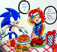 Contest Entry: Special Dinner! Sonic X Sally by Hanoi25201
