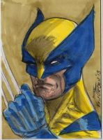 Wolvie sketch Card by MikeVanOrden
