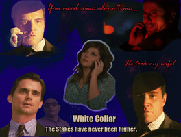 White Collar: Highest Stakes by WildHorseFantasy