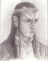 The Lord Elrond by BuckarooJoe
