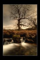 like a well beside the river by theoden06