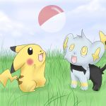 Pikachu and Shinx by MokonaTenshi