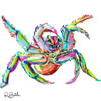 Spider by rcball