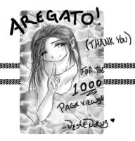 1000 page view thank you by VesteNotus
