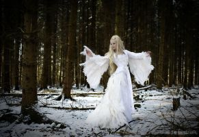 Snow Maiden by Annie-Bertram