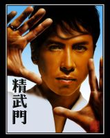 Donnie Yen by straycat27
