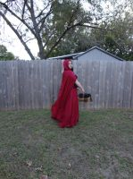 Red Riding Hood 13 by HiddenYume-stock