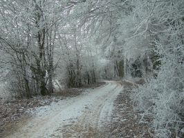 Winter Path I by kuschelirmel-stock