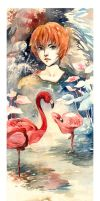 Flamingo by wantou