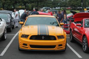 Ford Mustang by Eclipse--Designs