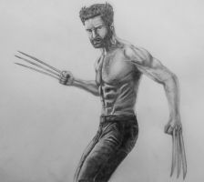 The Wolverine by CB-ComicArt