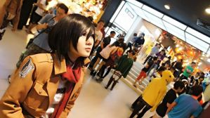 [Shingeki no Kyojin][CPF 2013] Wondering by ShinigamiNeko92