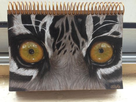 TIGER EYES by azuh