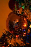 Self portrait in a bauble by alicecorley