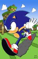 Sonic colored sketch by Freeloader4hire