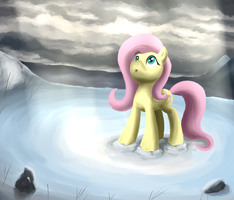 Fluttershy's journey by Corina93