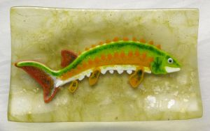 Sturgeon Acipenser Fused Glass Dish by trilobiteglassworks
