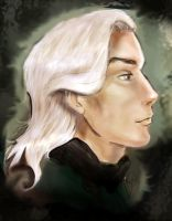 Malfoy senior by Linnpuzzle