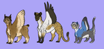 sphynx adopts - closed by hyenidae