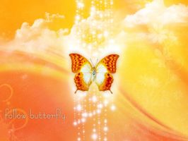 Follow Butterfly by Matrixma3
