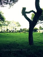 belleview biltmore pt.5 by roxyjeanette