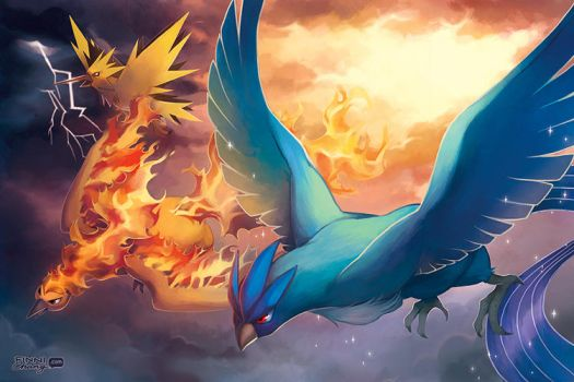 PKMN: Legendary Birds by finni