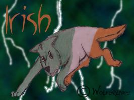 My Heritage- Irish by wolfgrl1492